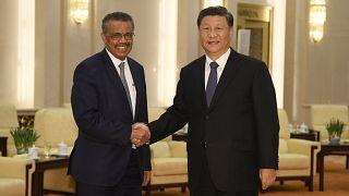 Archivo: Tedros Adhanom Ghebreyesus, director general de la Organización Mundial de la Salud da la mano al presidente chino Xi Jinping.