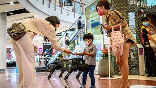 Robotkutya segít betartani a higiéniás szabályokat