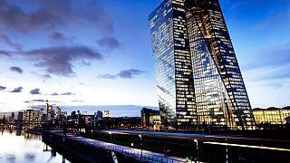 the European Central Bank (ECB)