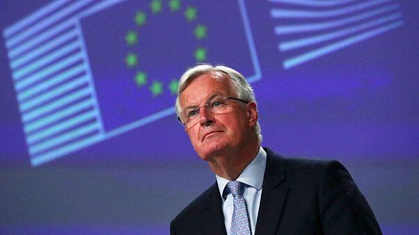 میشل بارنیه، مذاکرهکننده ارشد اتحادیه اروپا