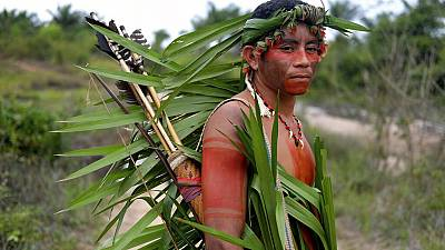Indigenous-governed land has the highest levels of biodiversity.