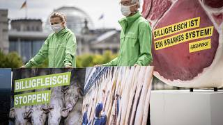 Egészségügyi kockázatokat rejt a húsipar a zöldek szerint