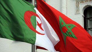 العلاقات الدبلوماسية بين الجزائر والمغرب