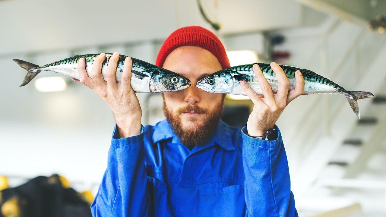 Fischerei im Wandel: Anpassungsfähigkeit ist der Schlüssel zum ertragreichen Fang von morgen
