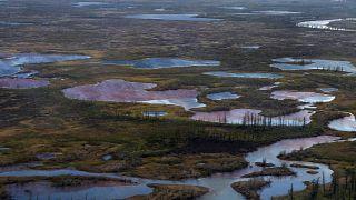 Загрязнённые дизельным топливом водоёмы под Норильском