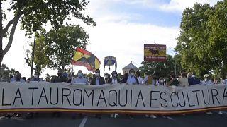 Pro-Corrida-Demonstration in Sevilla