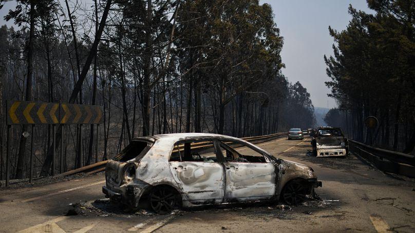 PATRICIA DE MELO MOREIRA / AFP
