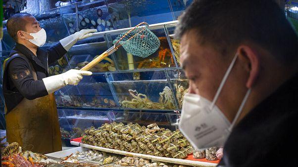 Çin'in başkenti Pekin'deki balık pazarından bir kare