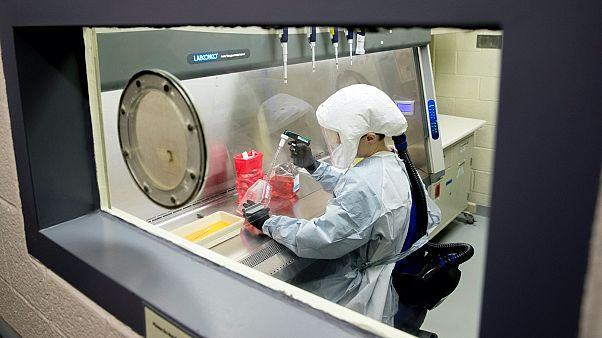 Koronavírus-kutatás egy amerikai laborban