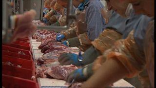 Más de 650 casos de covid entre los trabajadores de un matadero en Alemania