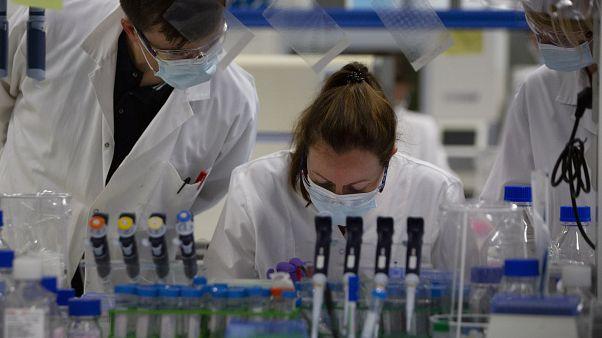 مختبر طبي يفحص عينات للكشف عن فيروس كورونا