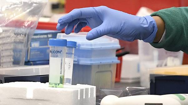 In this March 12, 2020, file photo, a researcher at Protein Sciences reaches for a vial in a lab in Meriden, Connecticut, US