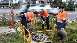 Una foto del 19 maggio scorso scattata a Melbourne, Australia, dove è stato avviato uno studio idrografico per combattere l'epidemia di Covid-19