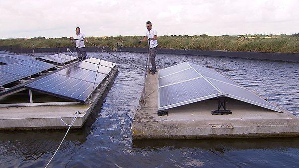 """La """"giustizia climatica"""" accelera la transizione energetica nei Paesi Bassi"""