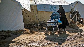 مخيم الهول في محافظة الحسكة، يناير 2020