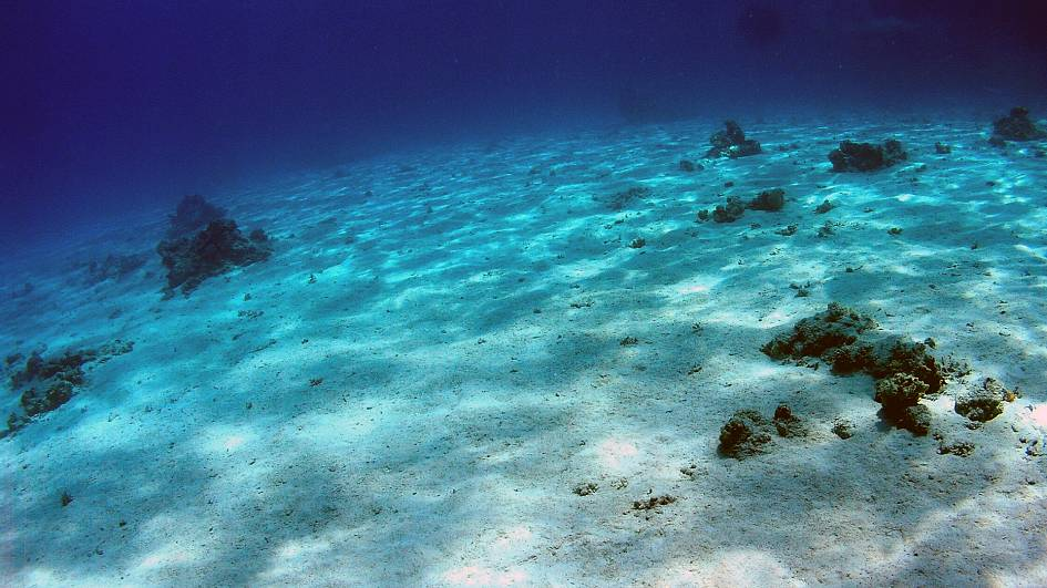 What's at the bottom of the sea? A fifth of the world's ocean floor has now been mapped
