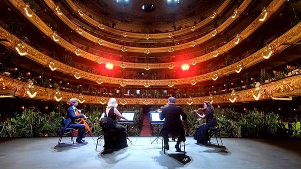 A Barcelone, un concert à la chlorophylle
