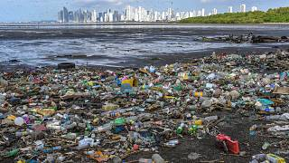 Garbage, including plastic waste, is seen on the beach of the Costa del Este neighbourhood in Panama City, Panama