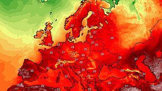 Temperaturas máximas durante la semana (media)
