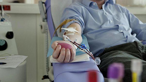 Kan bağısı
