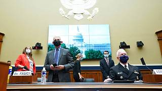Director of the National Institute of Allergy and Infectious Diseases Dr. Anthony Fauci testified on the US coronavirus response on Capitol Hill in Washington on June 23, 2020