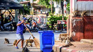 Un homme nettoyant un rond-point, l'un des principaux points de rassemblement des macaques à Lopburi, le 20 juin 2020