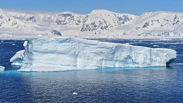 میکروپلاستیکها به عمق اکوسیستم زمینی جنوبگان هم راه یافتند