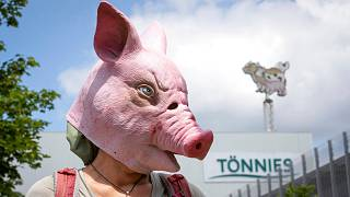 Animal rights activists protest in front of the Toennies meatpacking plant and slaughterhouse in Rheda-Wiedenbrueck, Germany, Saturday, June 20, 2020.