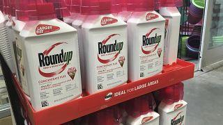 Bayer'in alt firması Monsanto tarafından üretilen tarım ilacı Round Up