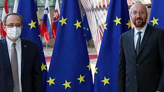 Avrupa Birliği Konseyi