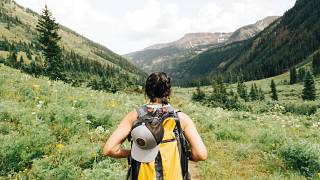 Walking in nature is good for your mental health.