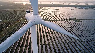 Солнце, ветер и вода: смогут ли климатические данные ускорить развитие «зеленой» энергетики?
