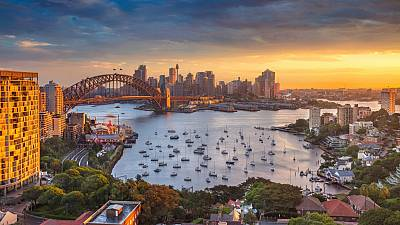 Sydney's rising temperature problem could be solved by trees.