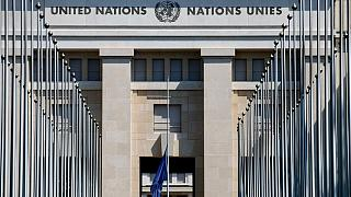 واکنش سازمان ملل به ویدیوی رابطه جنسی کارکنانش در خودرو