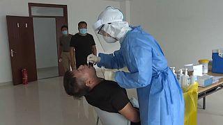WHO: Deutschland als Blaupause im Kampf gegen das Coronavirus