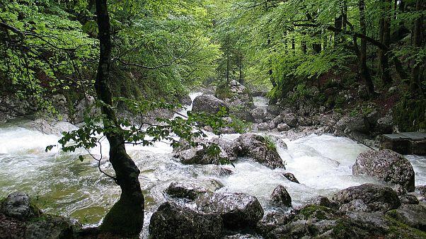 Der größte und wichtigste Fluss Sloweniens und Kroatiens