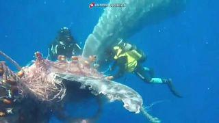 Спасение кита итальянской береговой охраной