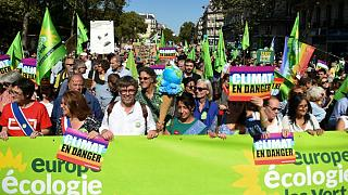 Fransa'da Yeşiller Partisi'nin yürüyüşü