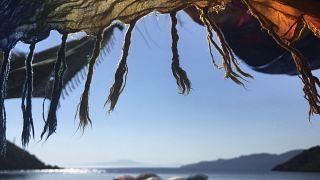 شباب يجلسون على شاطئ البحر في كارداميل اليونانية - 2020/06/28
