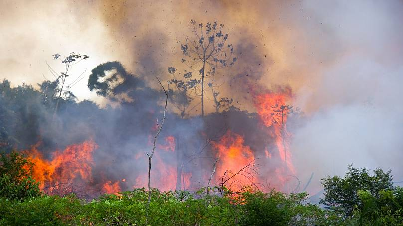 Brazillian Amazon Forest burning to clear space for pastures.