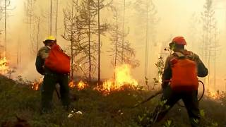 Forest fires burn out of control in Russia's Arctic region