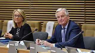 AB Brexit Başmüzakerecisi Michel Barnie