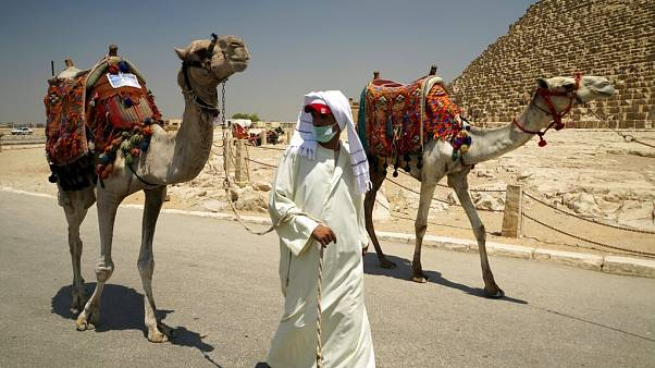 A camel guide wears a surgical mask while pulling his camel at the Giza Pyramids in Giza, Egypt