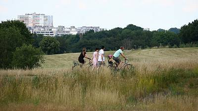 Frankfurt's green rooftops and urban airways aim to keep the city cool