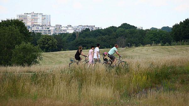 Una planificación urbana inteligente: la receta de Frankfurt contra el calor
