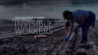 Invisible workers: Underpaid, exploited and put at risk on Europe's farms