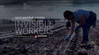 Fermes et abattoirs : ces travailleurs invisibles et exploités qui nourrissent l'Europe