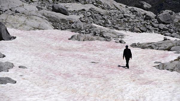 Clima: ¿Por qué ha aparecido 'nieve de sangre' en los Alpes italianos?