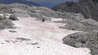 İtalyan Alpleri'nde pembe kar şaşkınlığı
