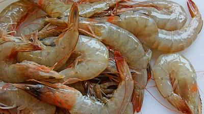Shrimp shells are being used to make batteries